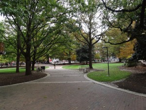 Brickyard Trees and Benches